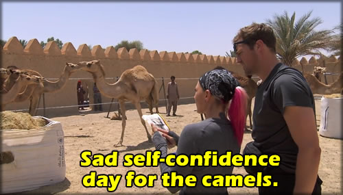 camelconfidence